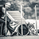 Oliver Steinberger Addestratore cinofilo - Agility Dog Roma